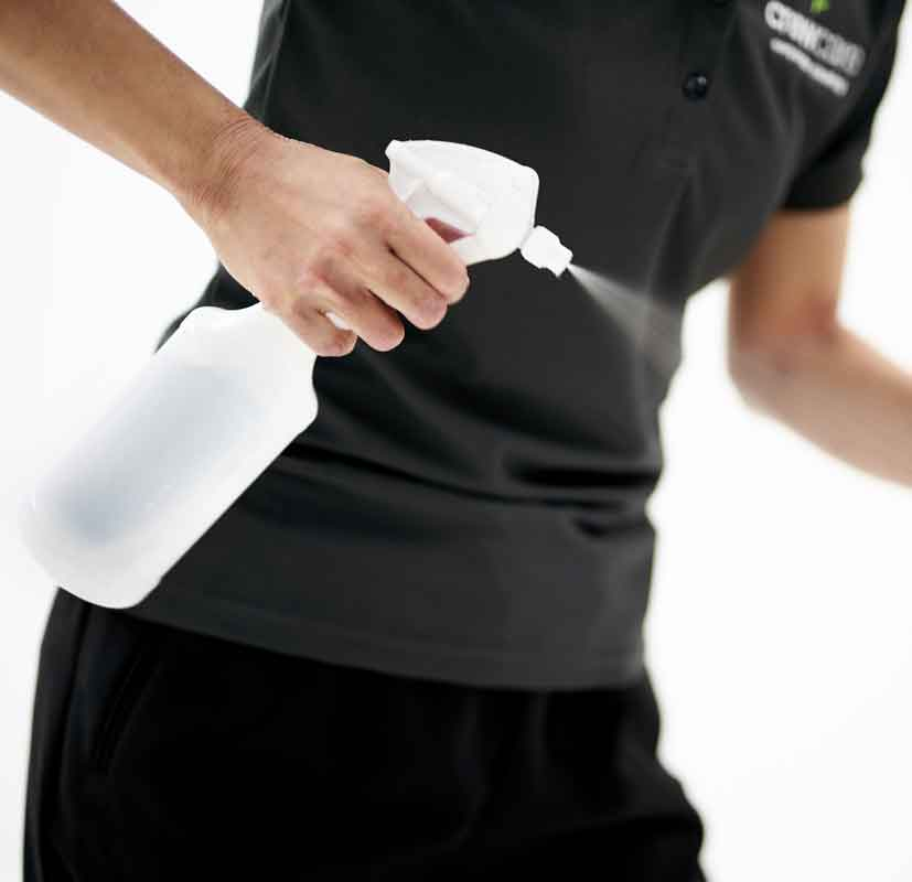 Commercial Cleaning Business Essentials