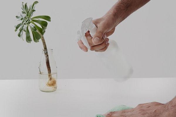 environmental-offer
